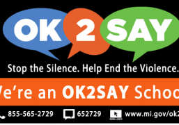 2018-03-20 15_20_24-OK2SAY - Promotional Material